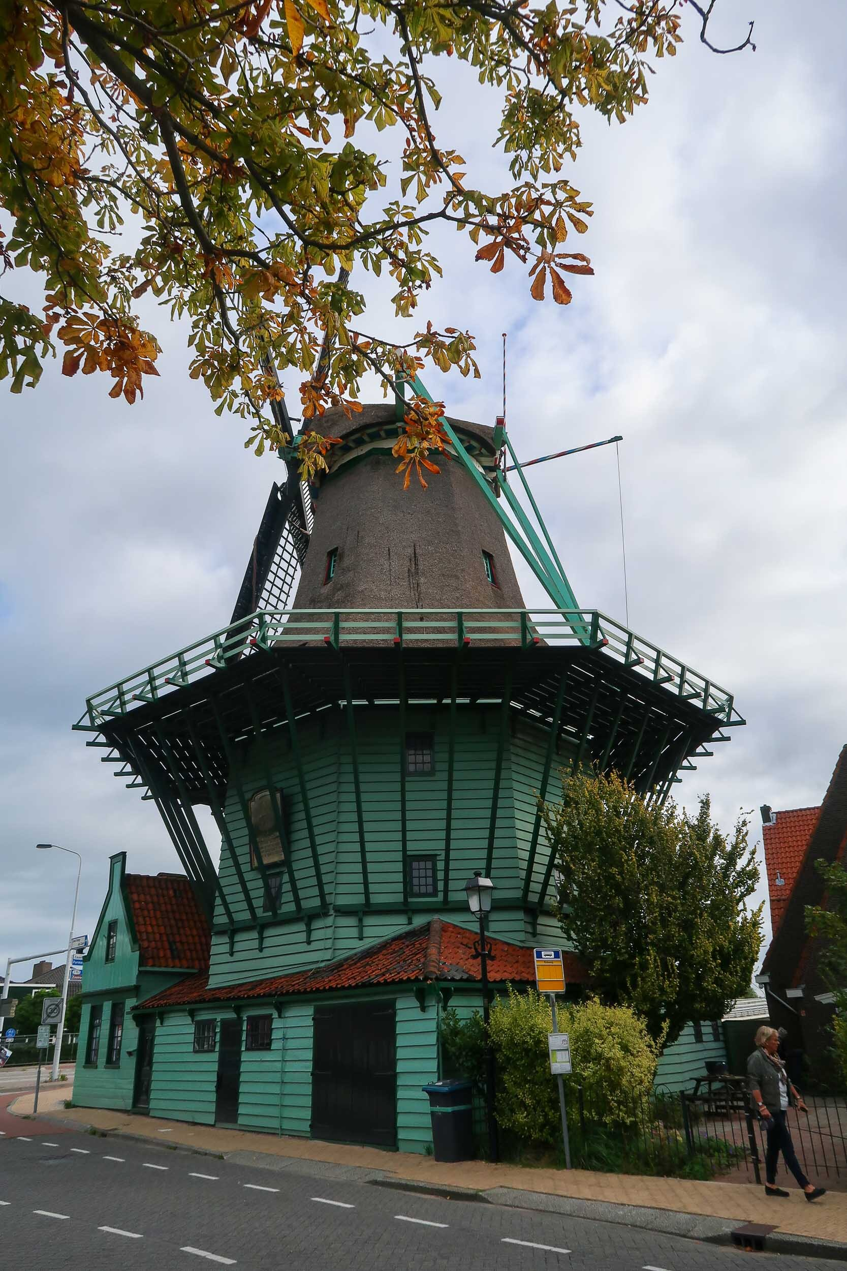 Historic windmills and green houses of Zaanse Schans - everything you need to know when visiting this quiet Dutch village.