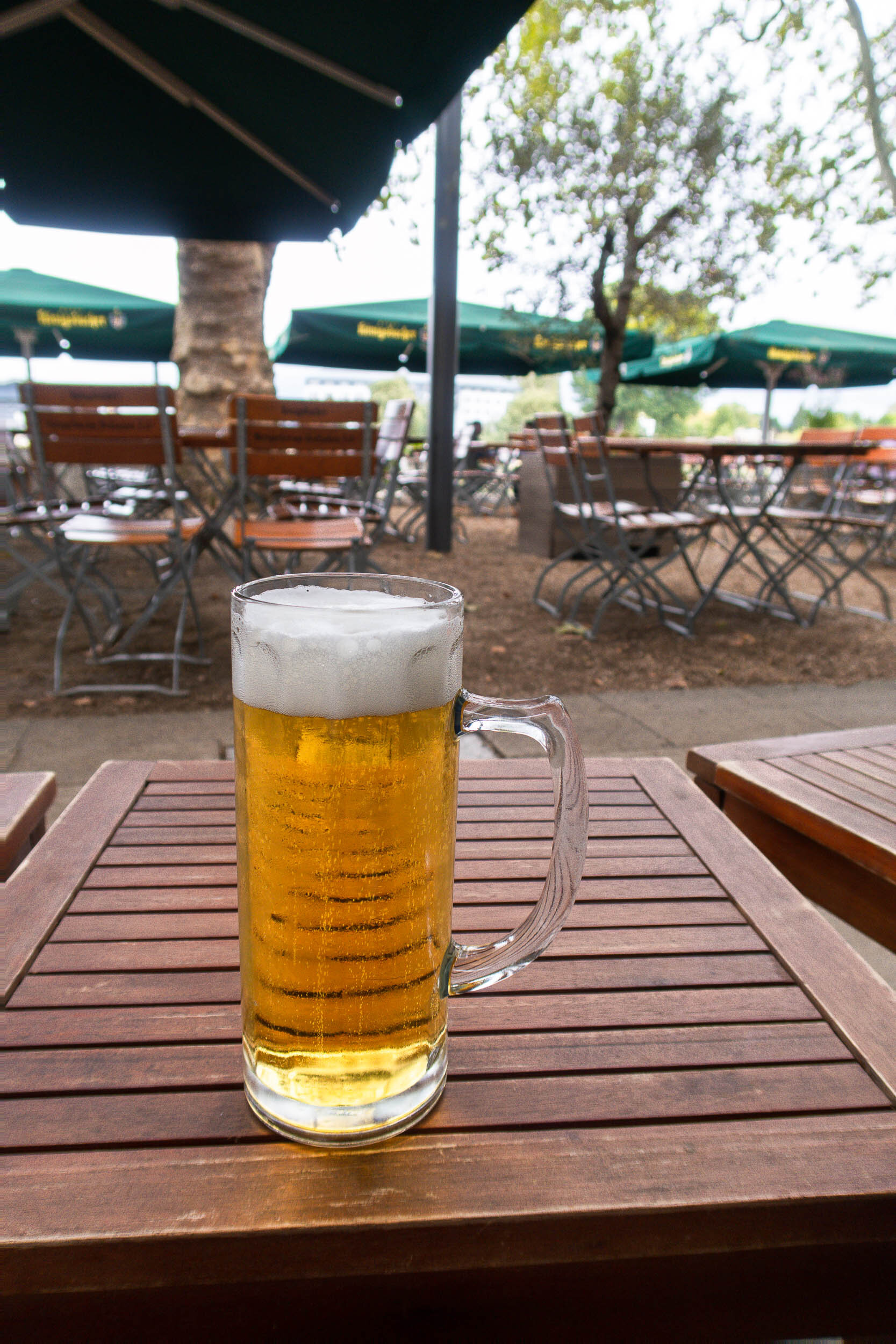 The ULTIMATE guide to German Beer gardens! Where to go and what to order.