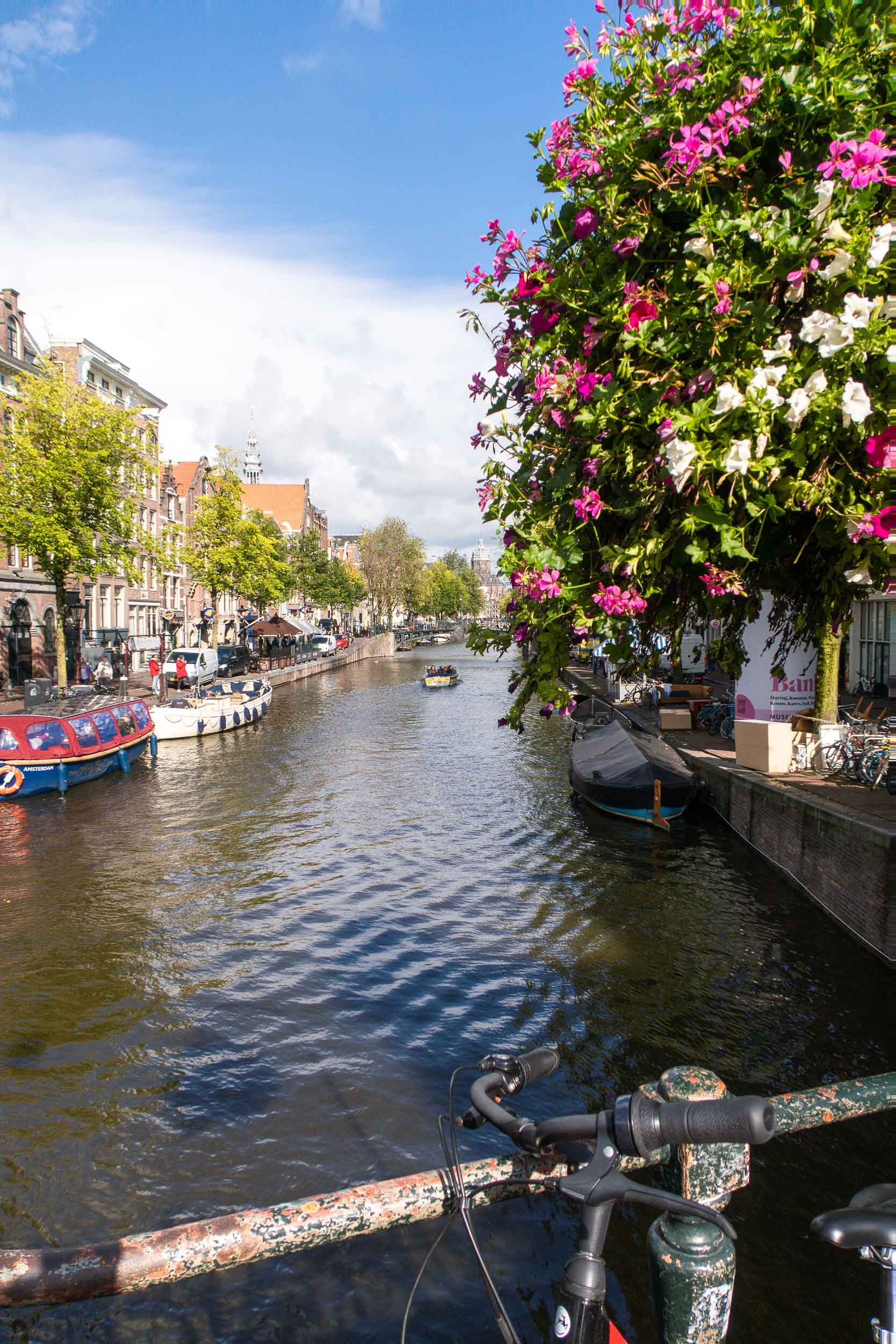 Amsterdam in the FALL. Everything you need to know!