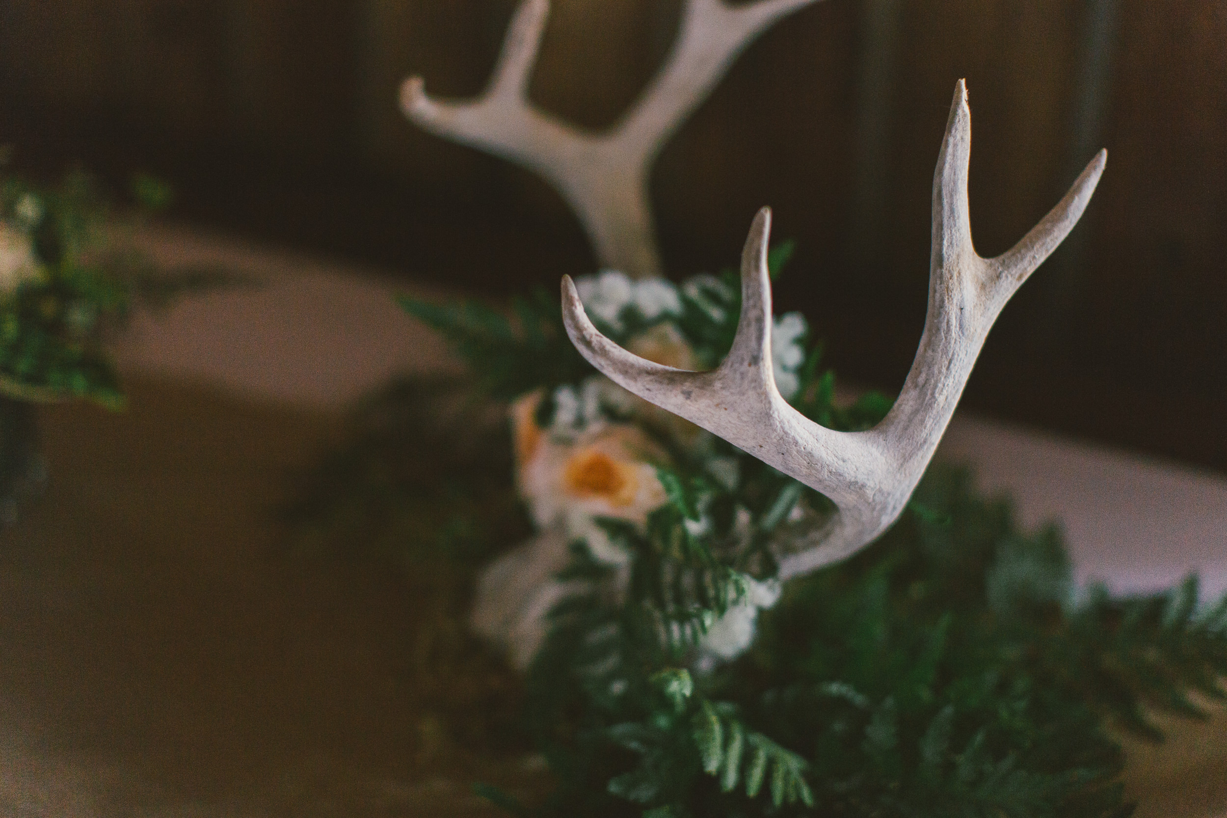 national park themed wedding details