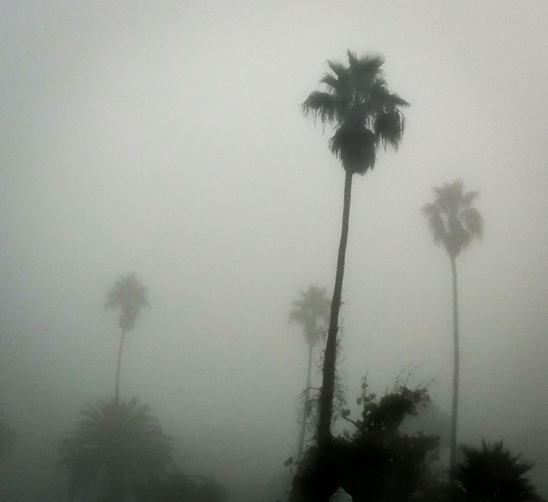 A Foggy Morning In Santa Monica, 2011-2.jpg