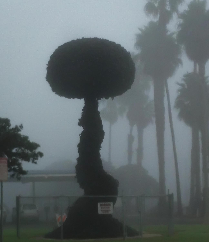 A Foggy Morning In Santa Monica, 2011-5.jpg