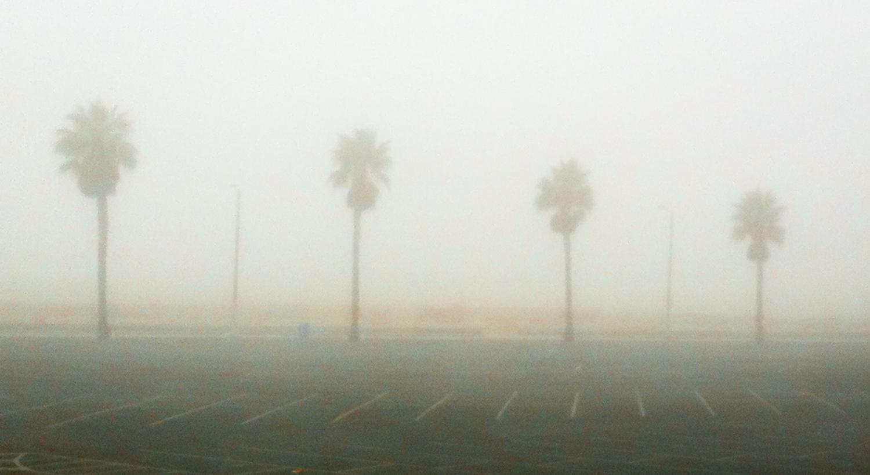 A Foggy Morning In Santa Monica, 2011-7.jpg