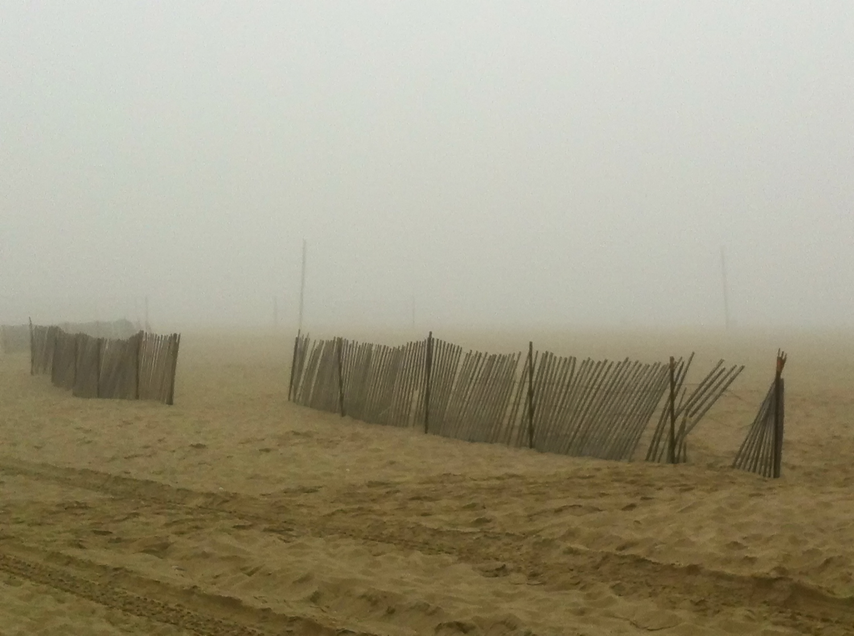 A Foggy Morning In Santa Monica, 2011-10.jpg