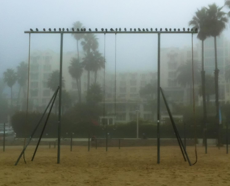 A Foggy Morning In Santa Monica, 2011-11.jpg