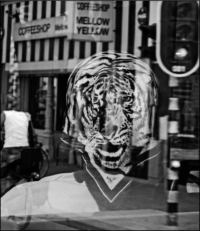 Tiger Print Reflection, Amsterdam, 2005