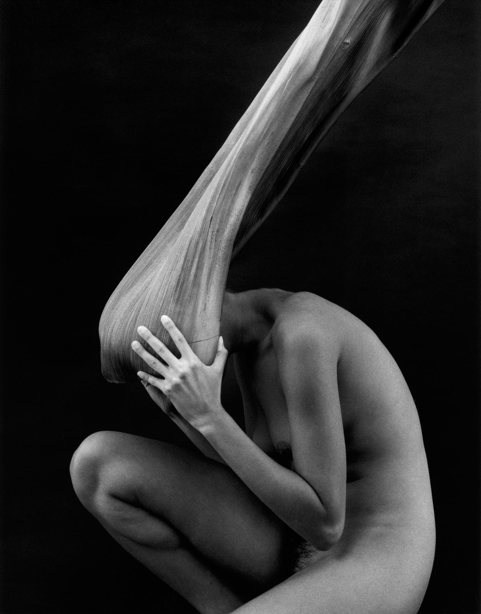 kim-weston-nude-and-palm-2009.jpg