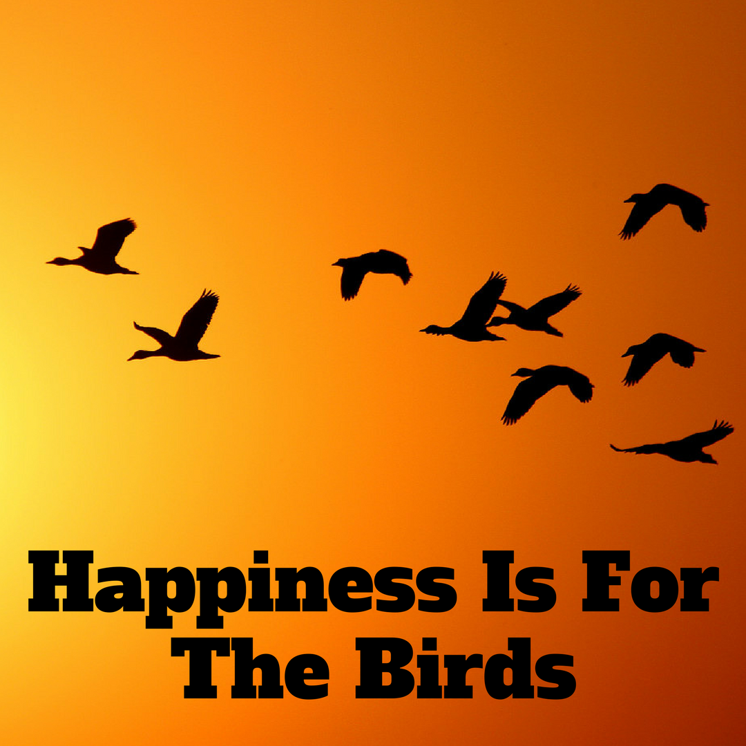 Happinessbirds.png