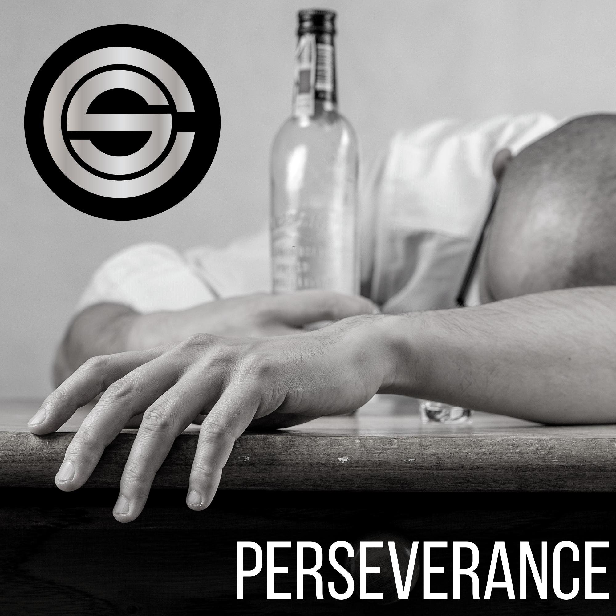 Perseverance by Chris Swan