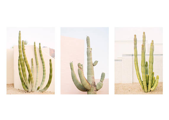 LOFT CREATIVE CACTUS ART PRINT PHOTO