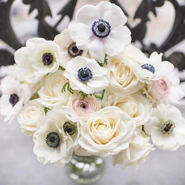 Bringing the beauty of Monday's weather into Tuesday. Photo via @georgiannalane. . . . #anniesloaninspiration #anniesloanpaint #anniesloanchalkpaint #anniesloanstockist #anniesloanhome #antique #bouquet #spring #interiordesign #interiorinspo #floralarrangement #flowers #homedecor
