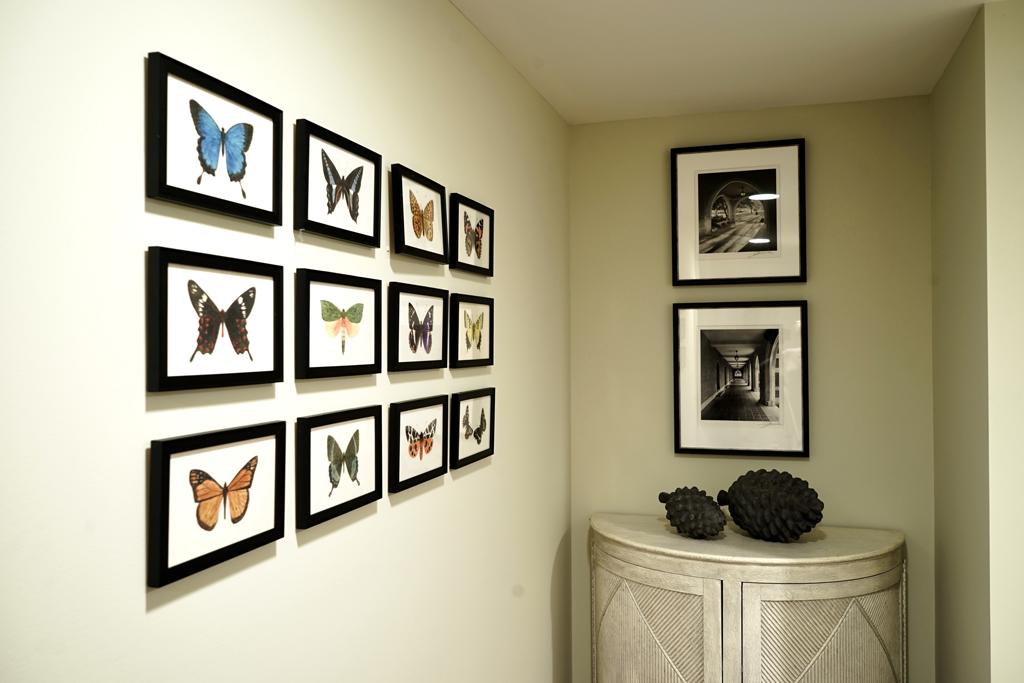 Treehouse_butterflies.jpg