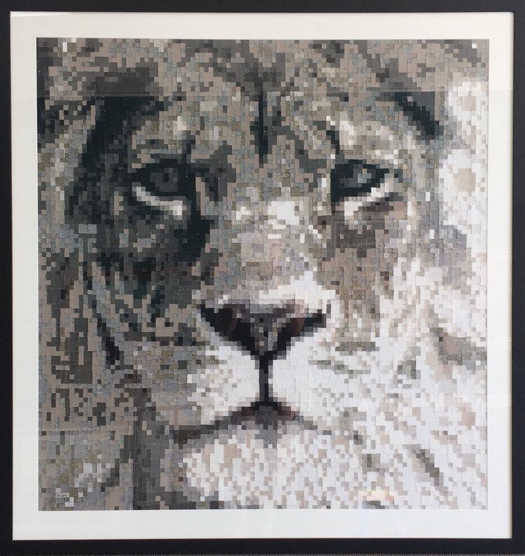 lionframed.jpg