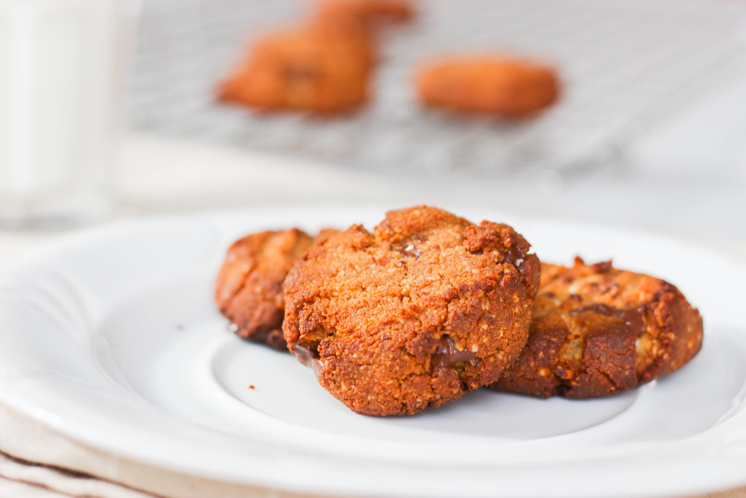 Paleo Cookies.jpg