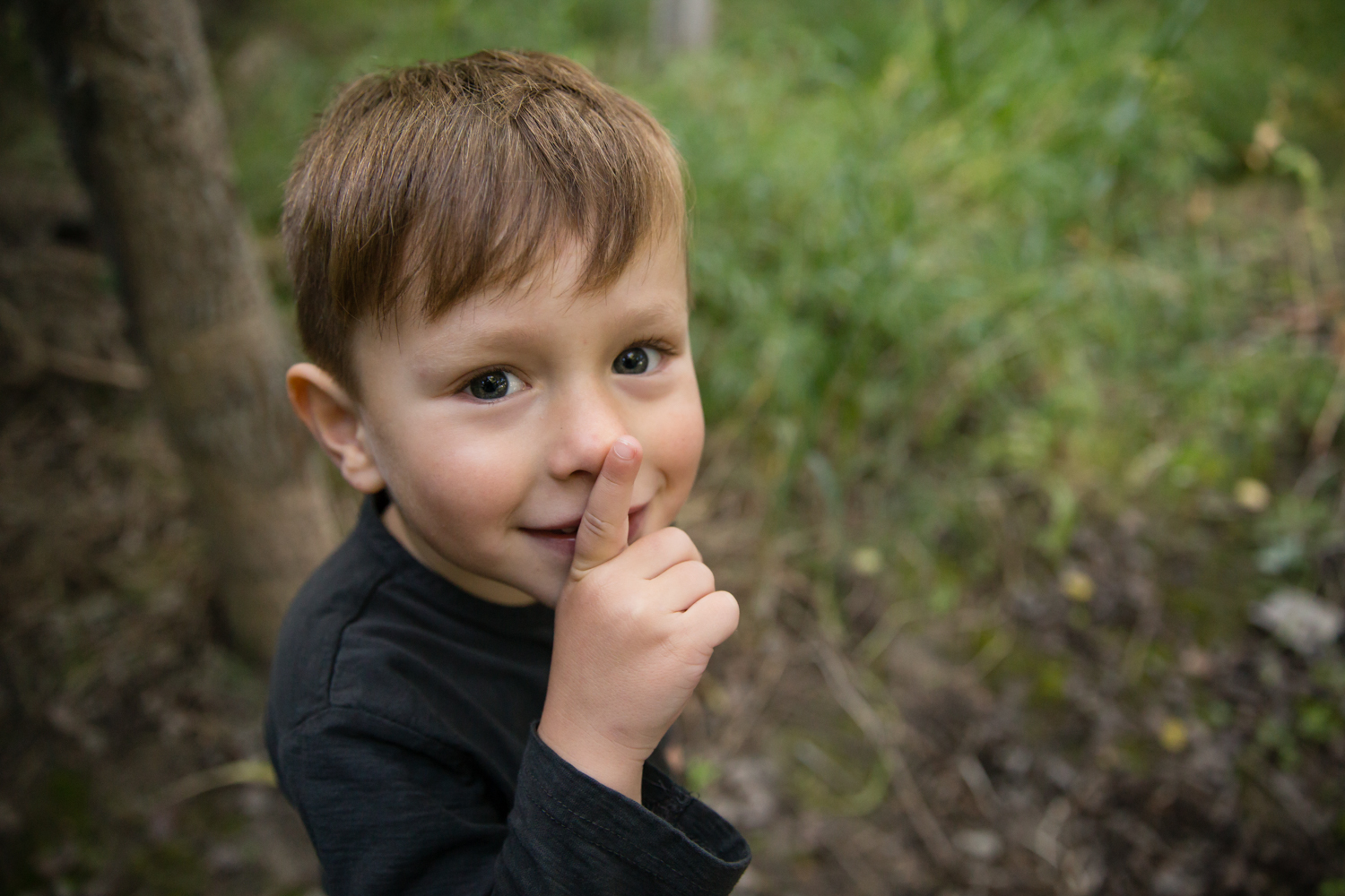 little boy in the forest, family photography