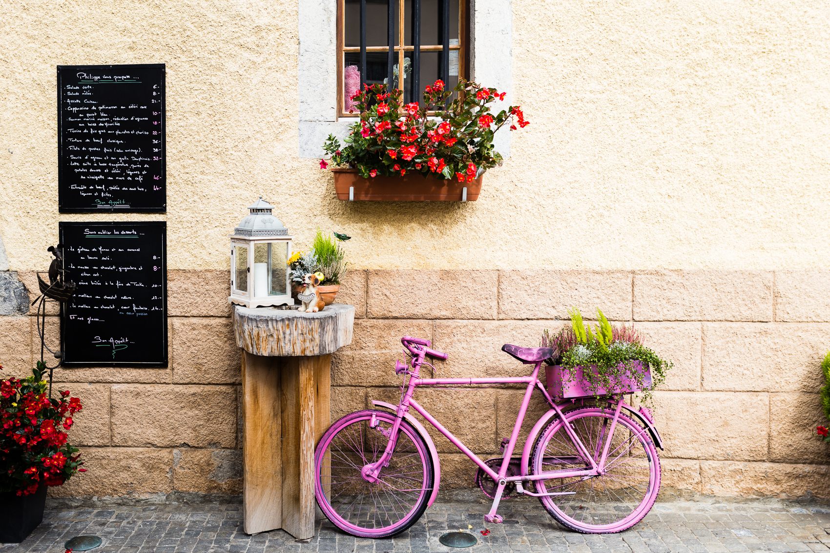 the colours of the flowers, the decor and the pretty pink bike that just pulled it all together - stopping long enough to take it in…we don't have this back home!