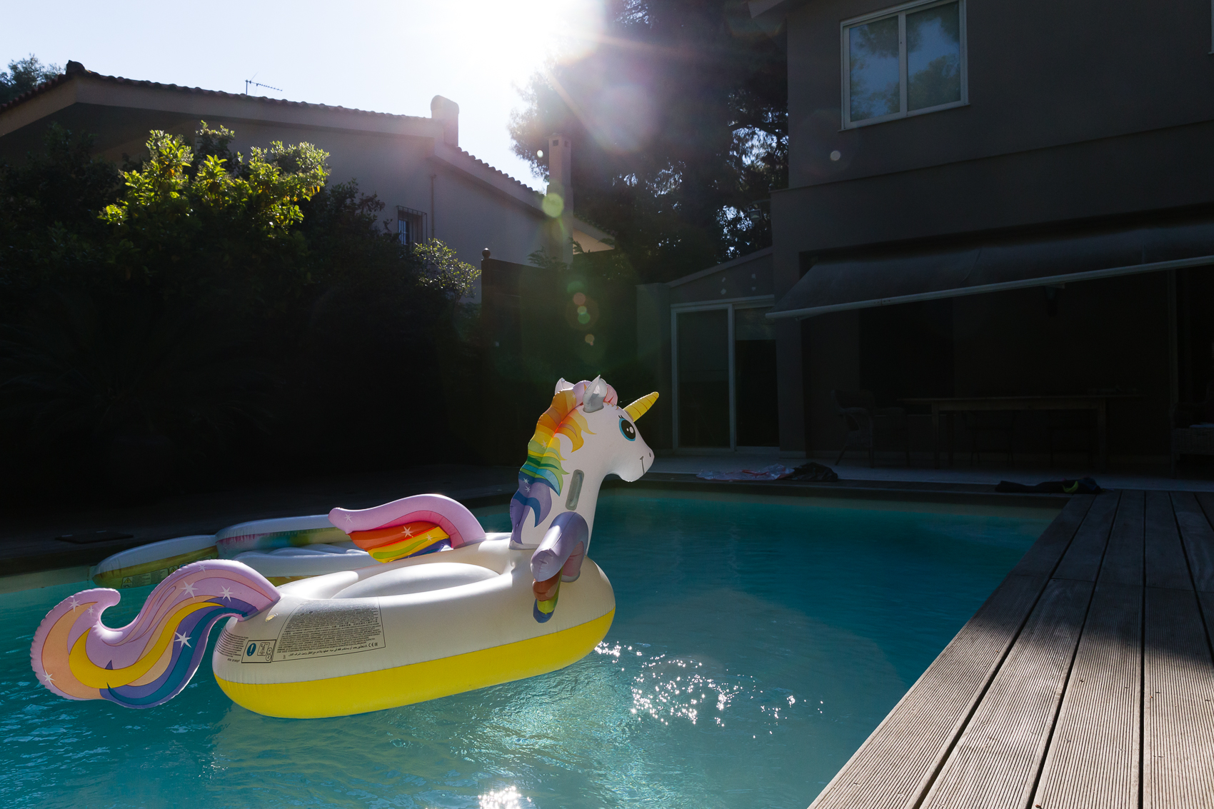 unicorn in a pool