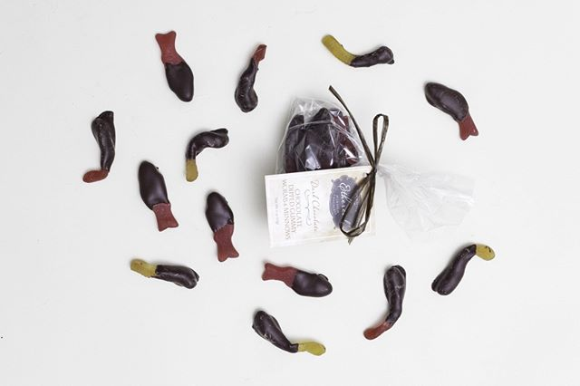 Let Dad go fishing this Father's Day, we can help. ⠀ Can you believe Father's Day is just around the corner? Make sure to grab Dad some of these super fun and delicious chocolate dipped worms and minnows. ⠀ They are available in our Woodstock, IL shop as well as online. ⠀ .⠀ https://buff.ly/2InR8mY⠀ .⠀ .⠀ .⠀ #fathersday #chocolateworms #chocolatedipped #organicchocolate #veganchocolate #glutenfreechocolate #glutenfreesweets #beantobar