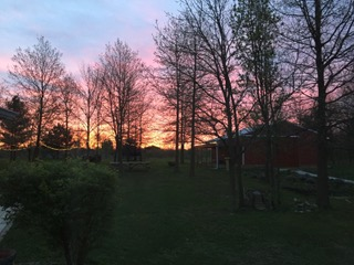 - Sunset on the Purple and Bumble Farm, Monee IL