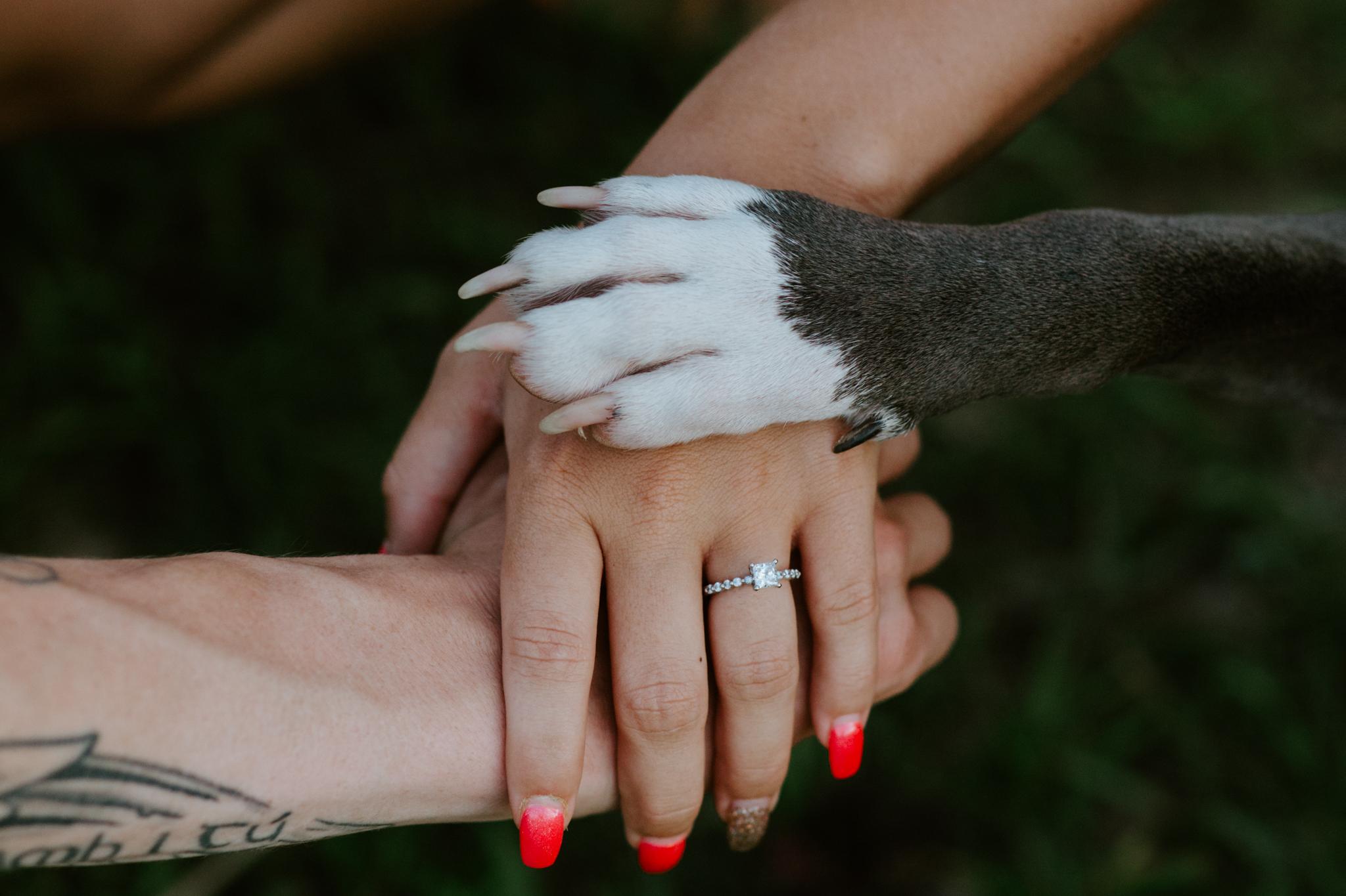 Bella + Dylan + Chattanooga + Nashville + Wedding + Engagement + Photographer-99.jpg