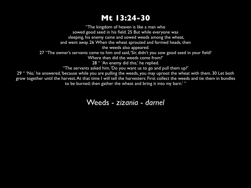 8::12:18-sermon visuals.007.jpeg