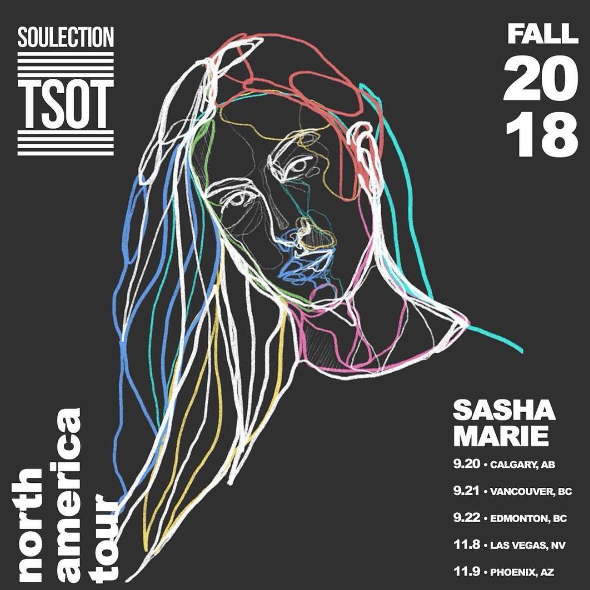 2018.09 - soulection tsot tour.png
