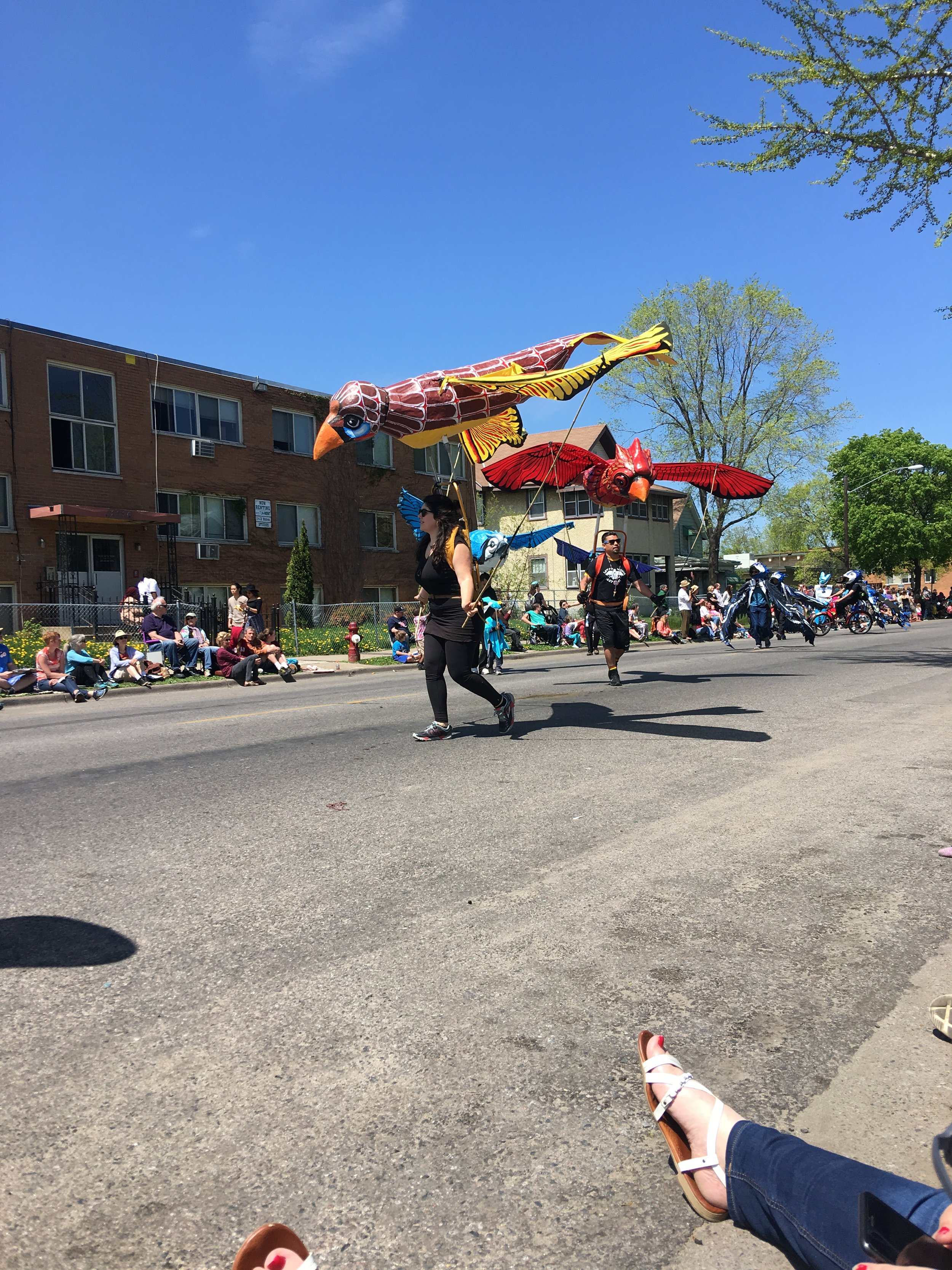 Flying birds winding throughout the parade