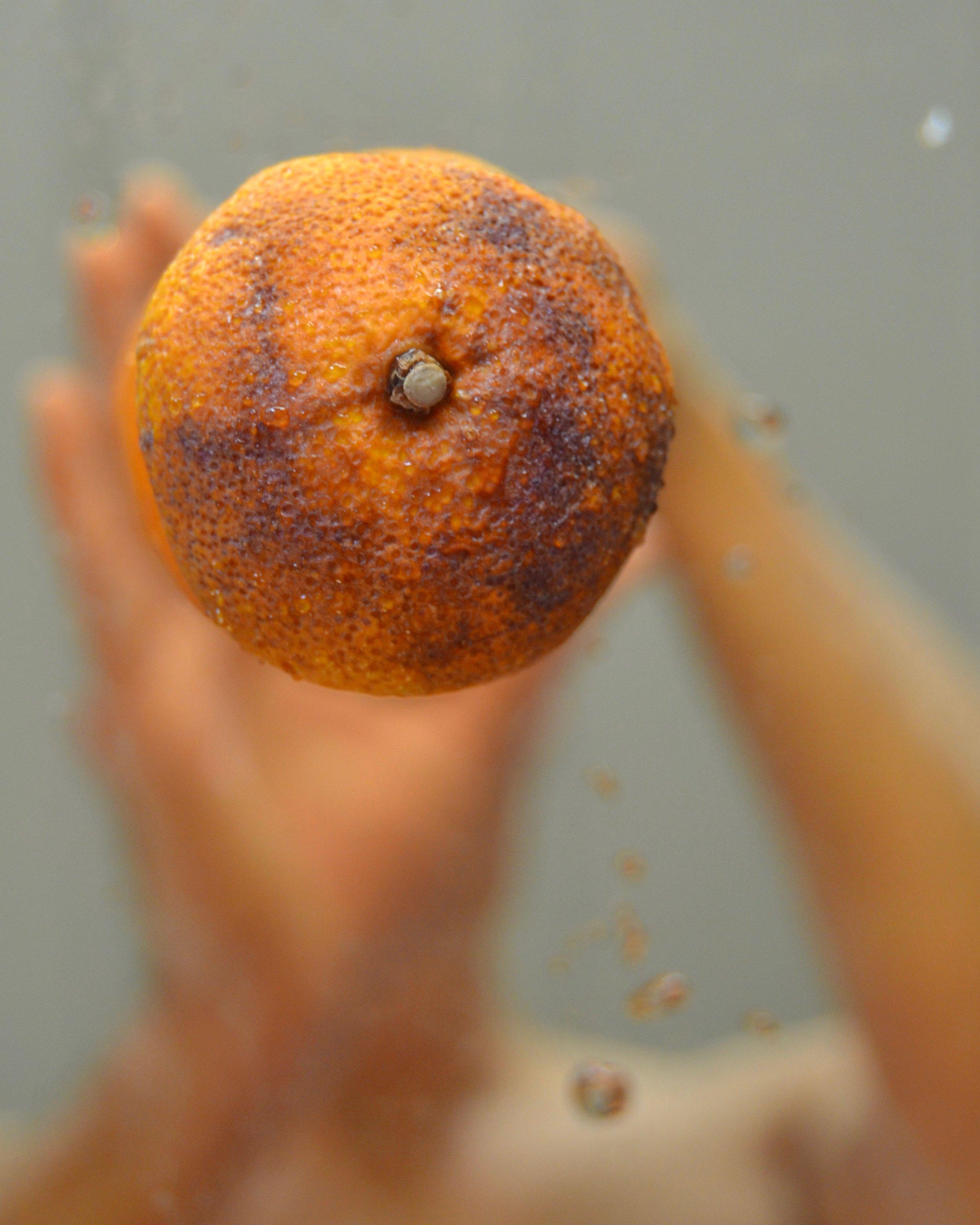 The Orangerie (1).jpg