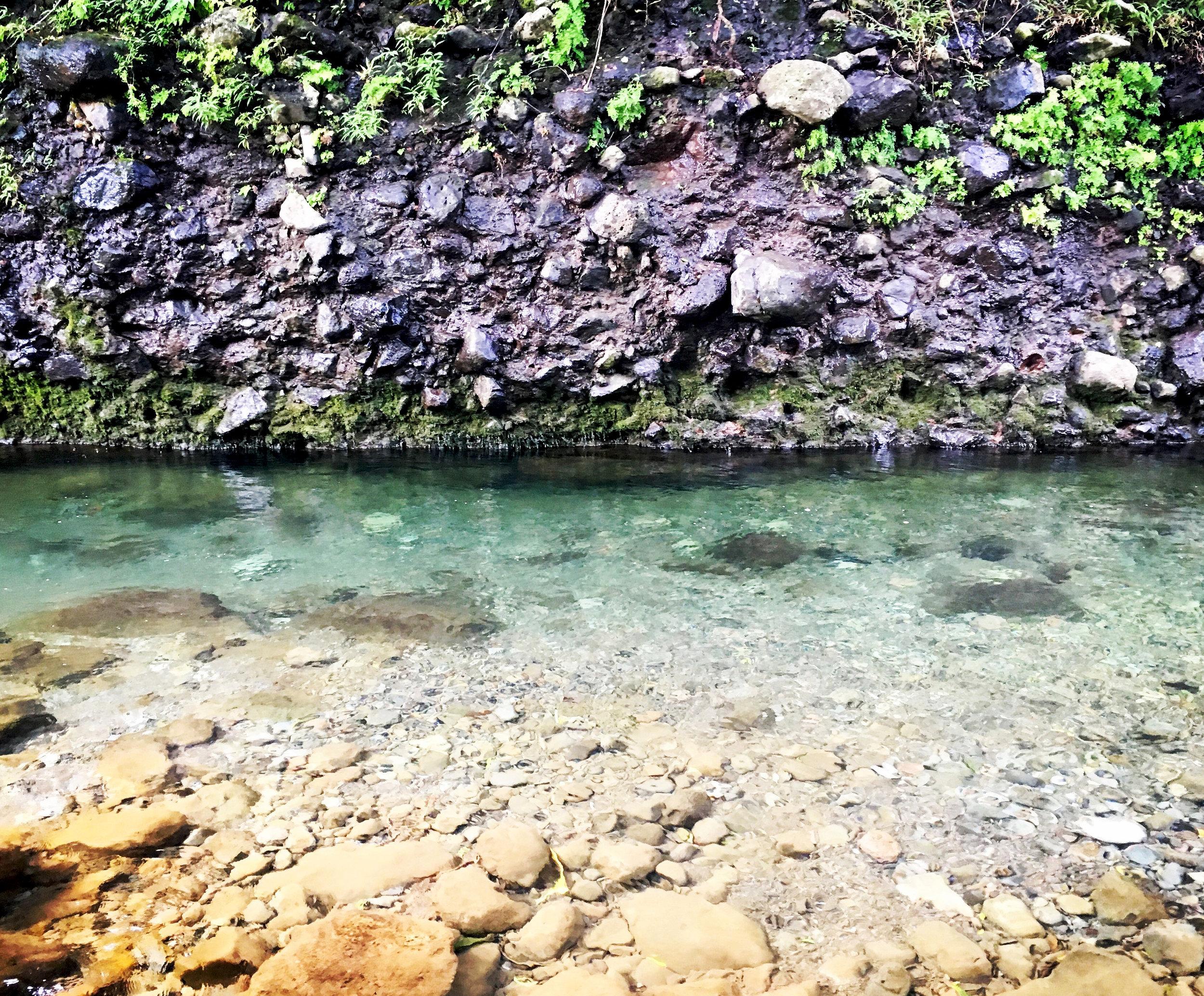 My super secret sacred spot on Maui