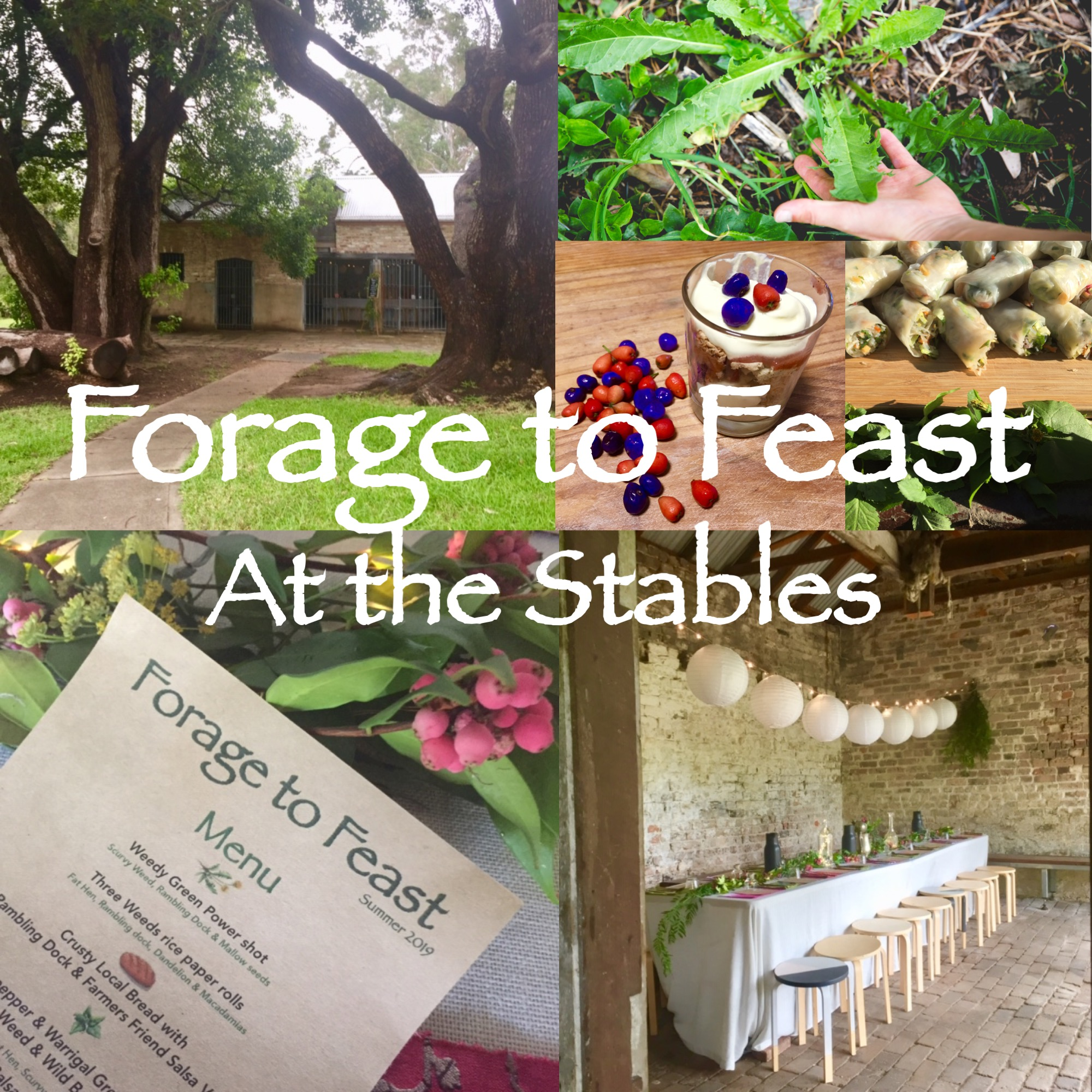 - WHEN: May 2018 WHERE: The Stables, Whites Creek, Sydney. WHAT: Workshop walk & sit down degustation FOR HOW MANY: 18 people COLLABORATORS: Diego Bonetto, providing ingredients from Wild Food Store and as one half of Forage to Feast creating a styled setting in a magical, heritage building. We feasted on a mini degustation utilizing foraged ingredients including many of the species learnt in the workshop.