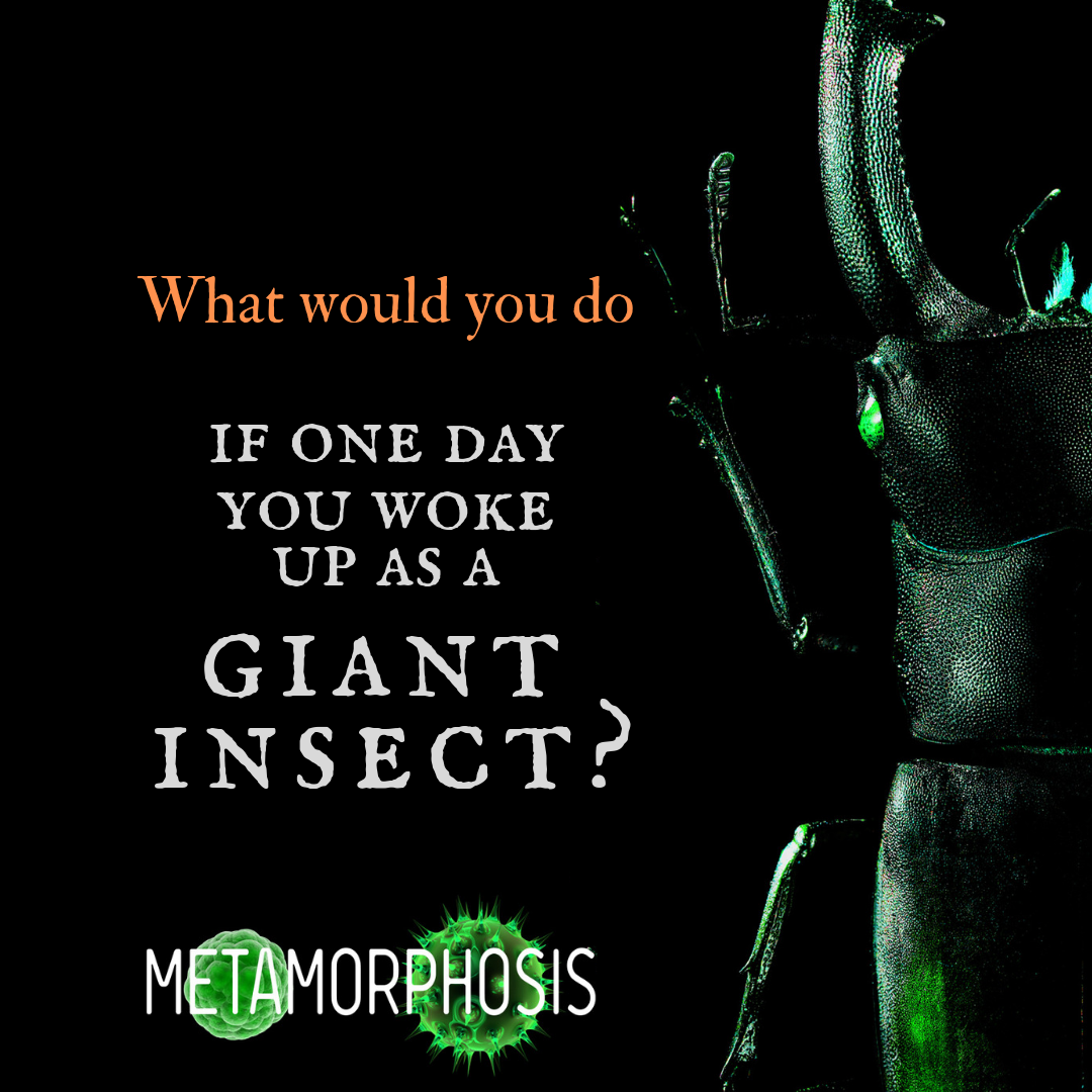 IG_GiantInsect.png