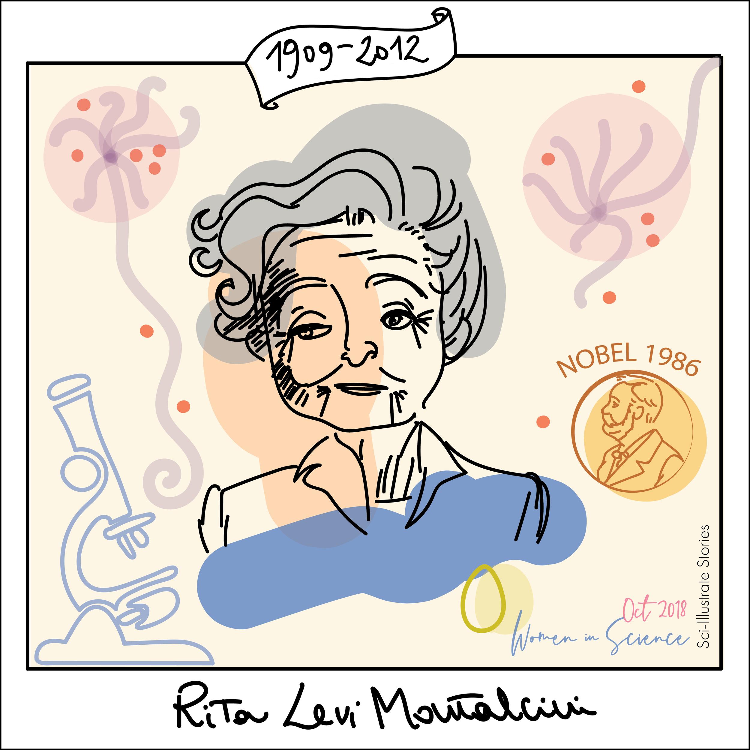 3_Rita-LeviMontalcini-2-01.png