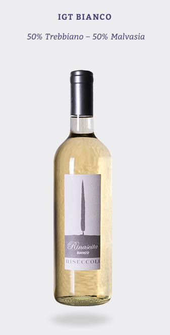 This off-dry white wine is perfect for casual sipping or as a light lunch partner.