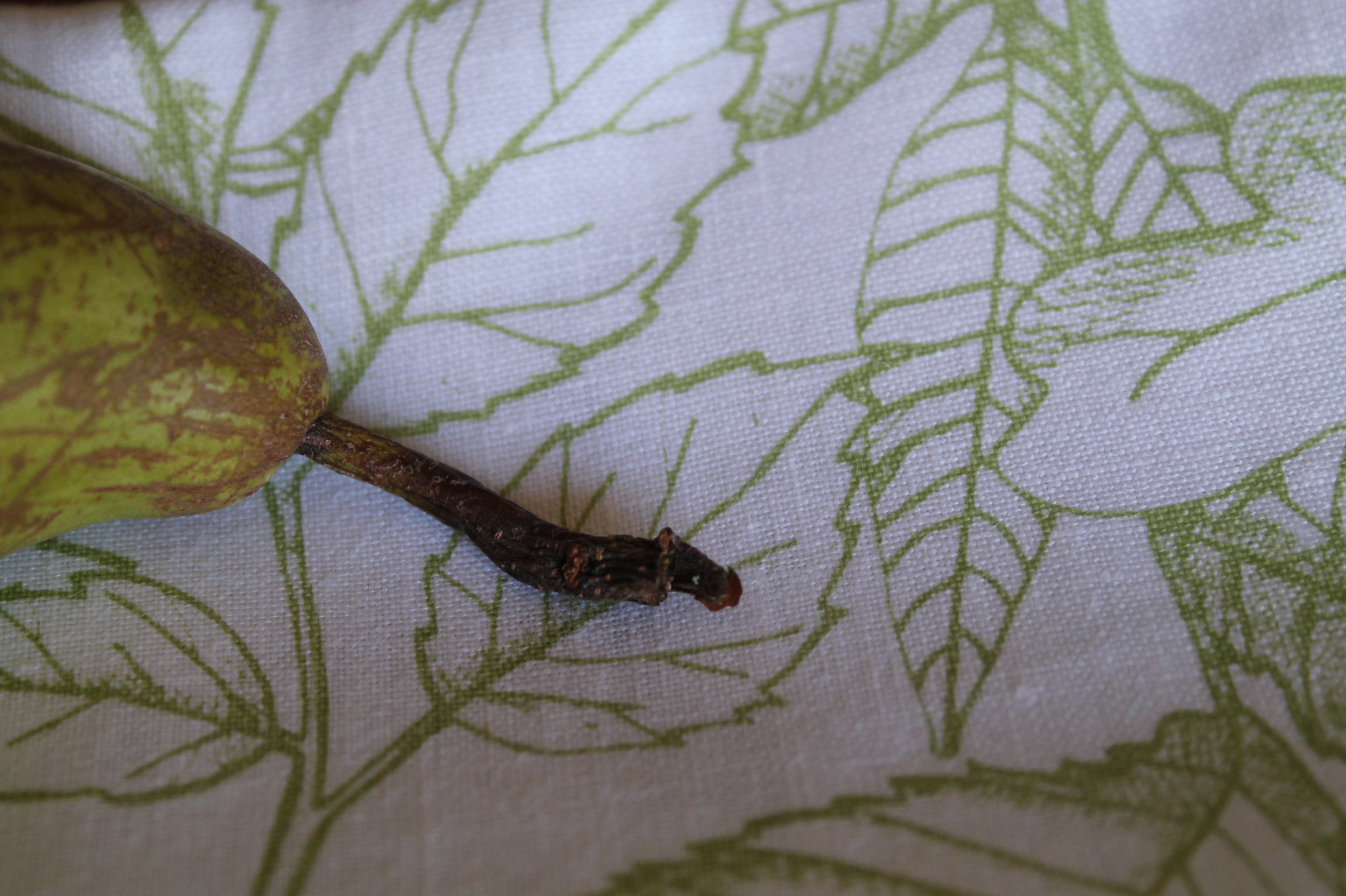 Leaves Screen Print, White Irish Linen