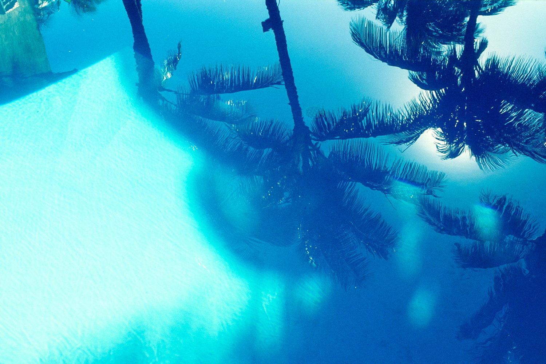 pool palmreflection   maui / hawaii   buy here