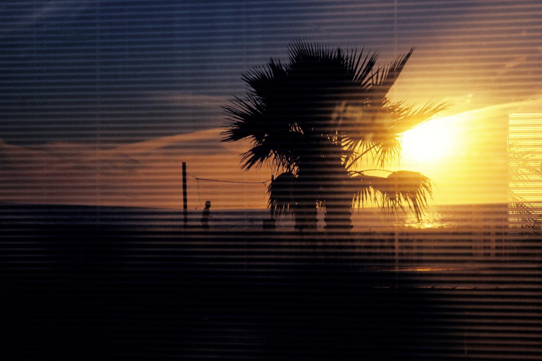 sunset  venice beach / california   buy here
