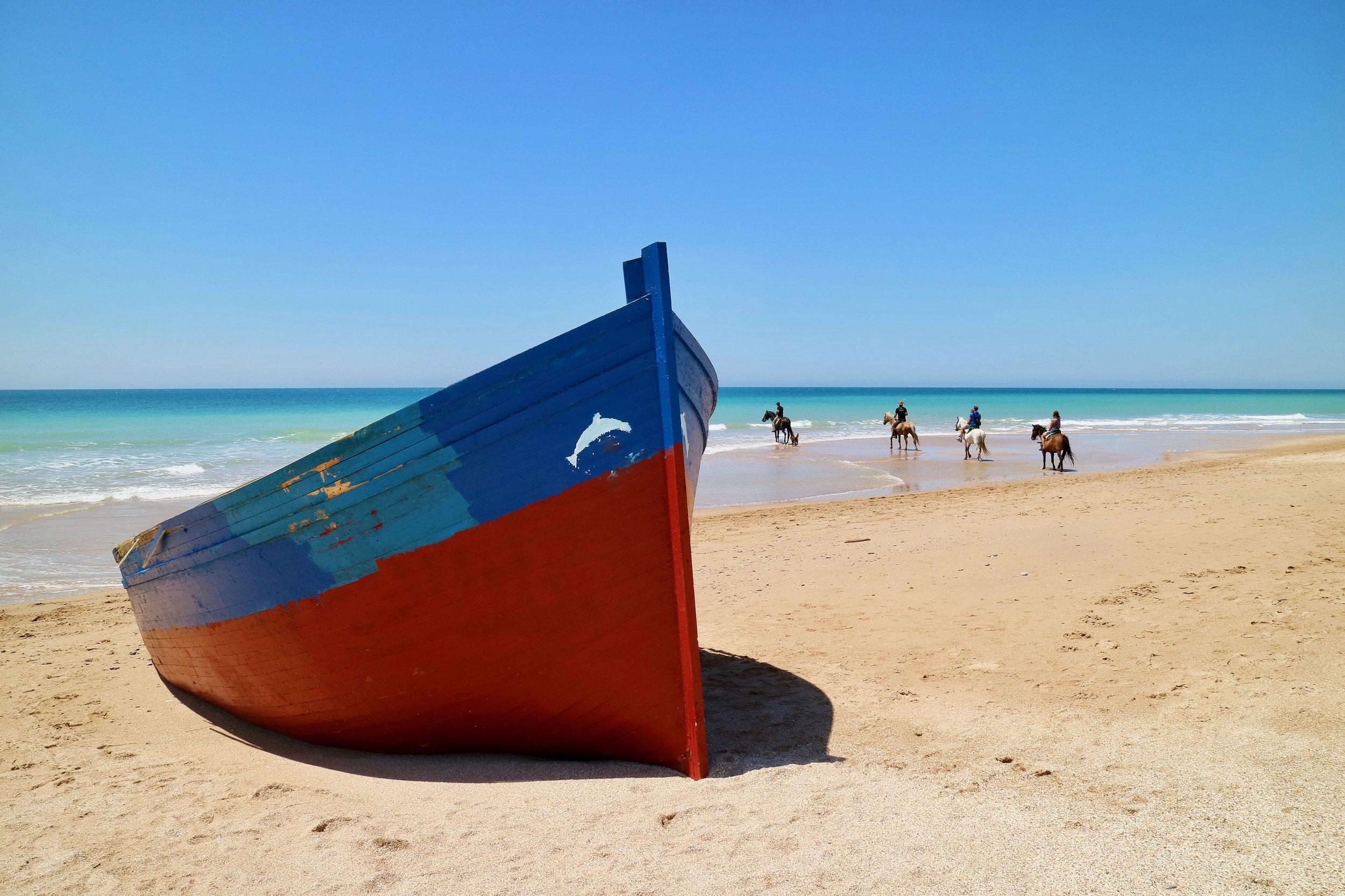 libertad  playa el palmar / vejer de la frontera / andalucía   buy here