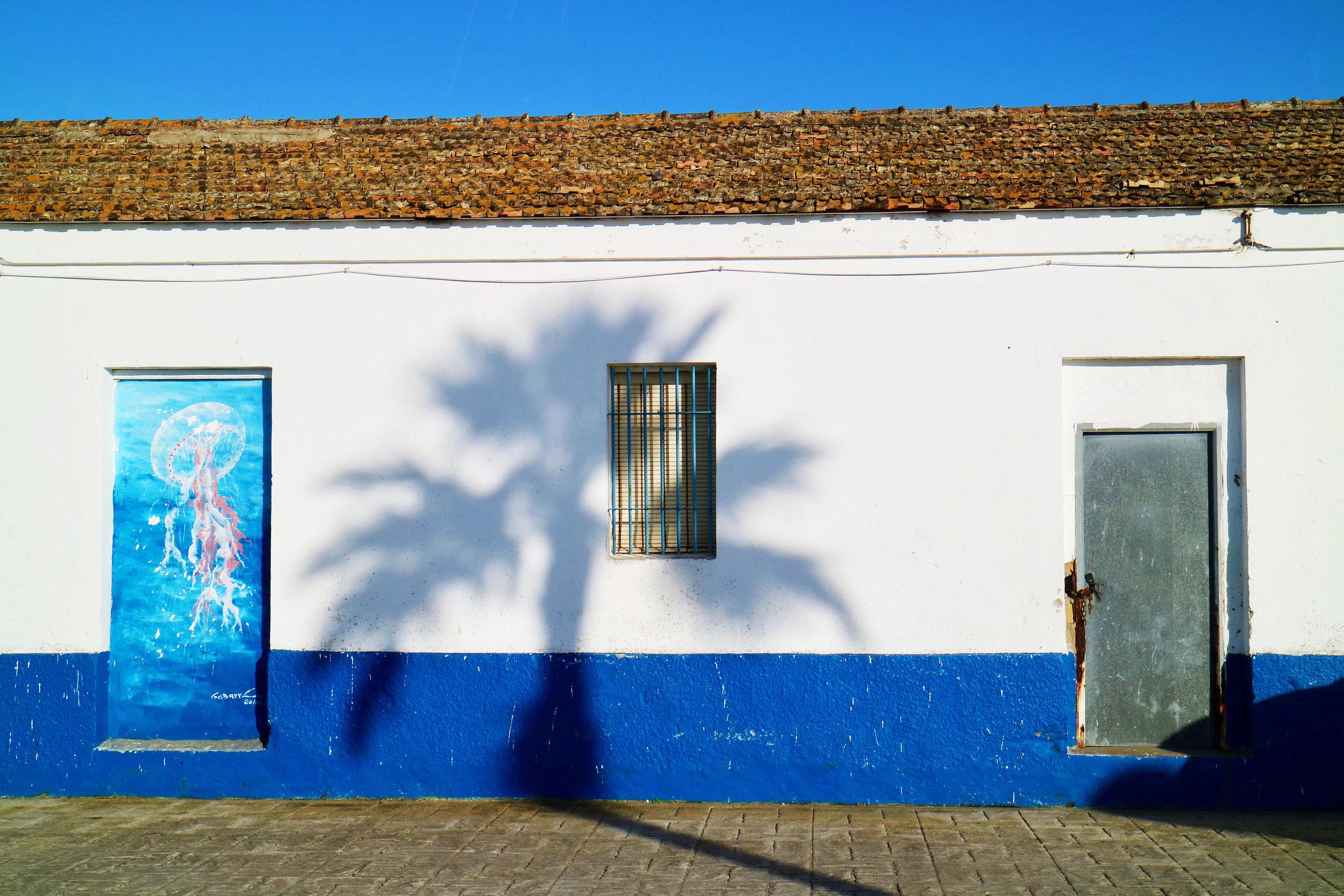 medusa con sombra palmera   poblado sancti petri / chiclana de la frontera / andalucía   buy here