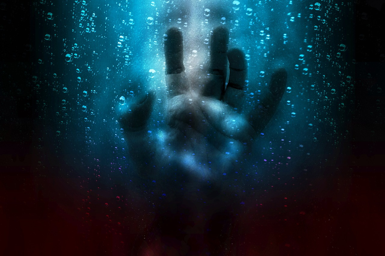 Expression-Despair-Hand-Scared-Fear-Horror-2593743.jpg