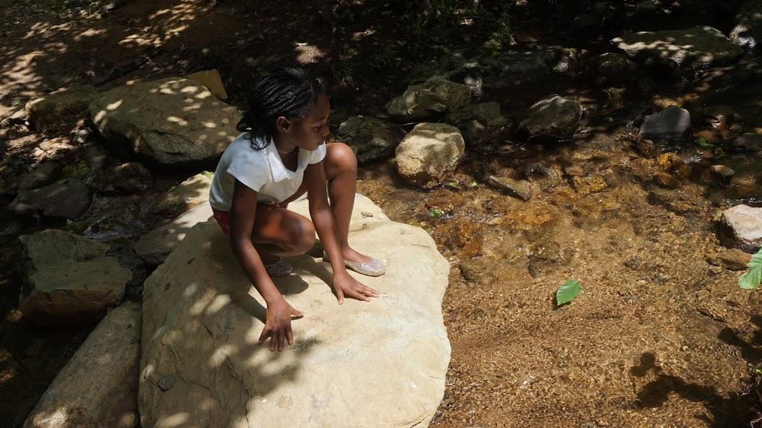 Nature Summer Camp