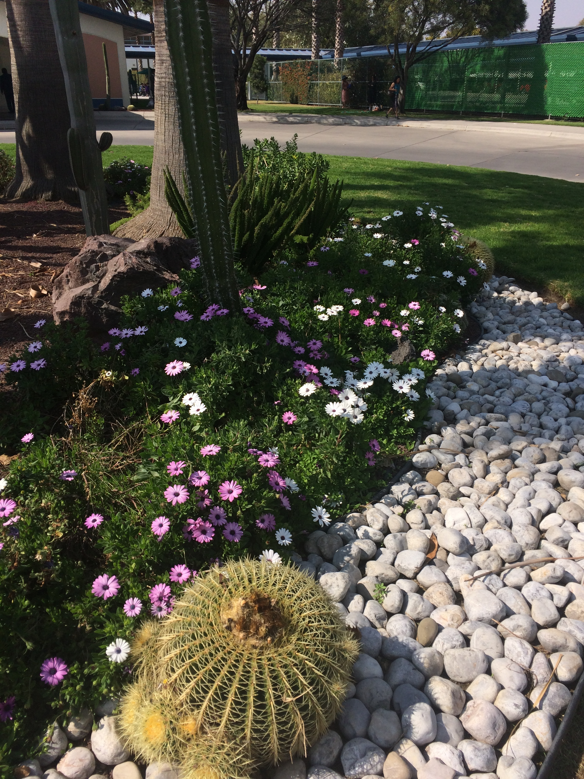 Landscaping - A beautiful front yard landscape, backyard landscaping design and professional landscape maintenance are among the most personal and most visible methods to differentiate a home. Landscape are investments that make sense and help you make the most of your home and the time you spend there with family and friends.At Shapes and Curves, we can help you design and style a landscape that is uniquely you.SERVICESPaver Patio, Paths, Steps, Fire Pit, Pond, Retaining Walls, Lawn Care, Irrigation Systems, Tree Care, Mulch and Landscape Stone, Edging, Planting, Pruning.