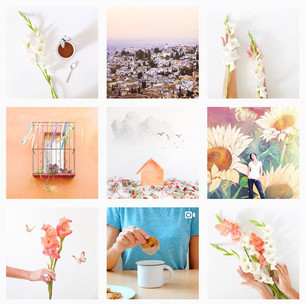 Un vistazo de mi cuenta en Instagram,  Visual Bloom .