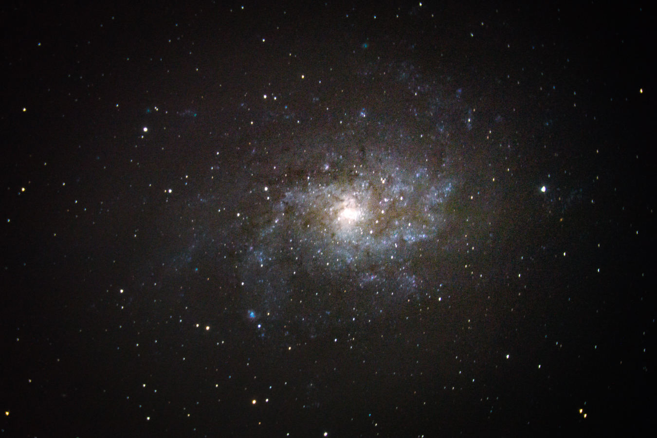 M33, the Triangulum galaxy, imaged with my Celestron 8SE. You can even see one of this galaxy's bright nebulae, NGC 604, towards the bottom left.
