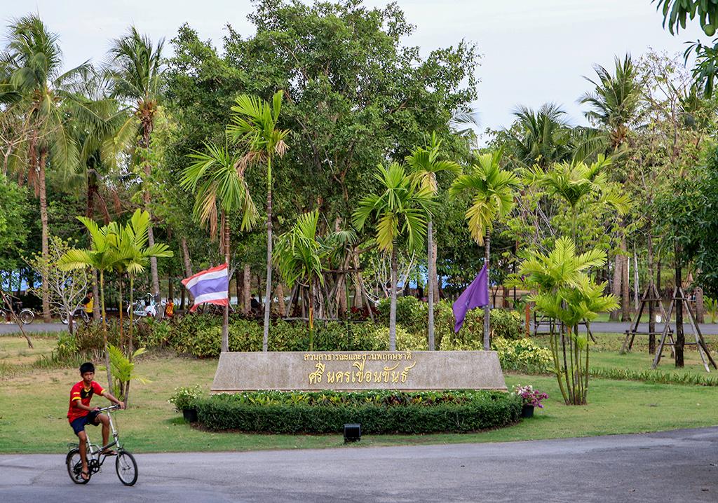 Bangkok's Green Lung - Bang Krachao Day Trip