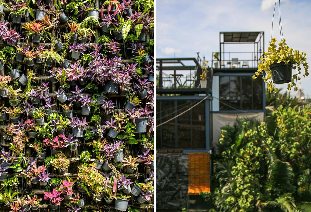 Bangkok Tree House - Bangkok's Green Lung
