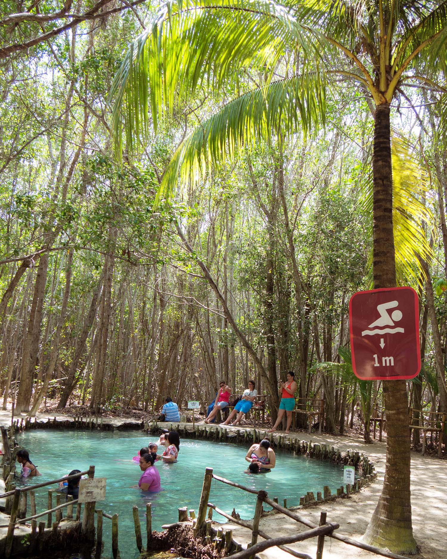 El Corchito - Cenotes near Progreso, Yucatan