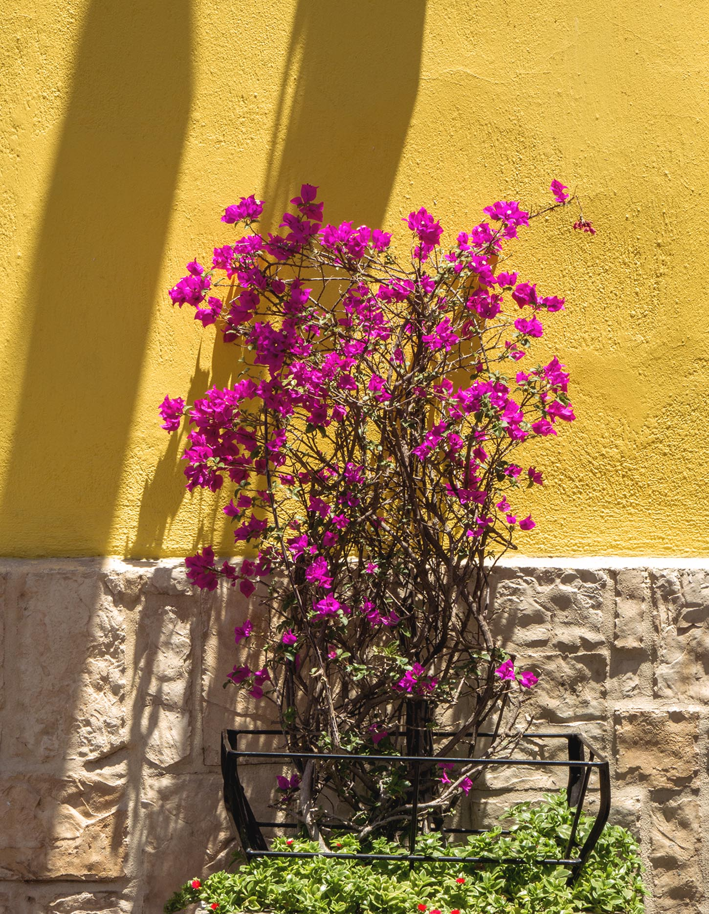 A Guide to Visiting Tlaquepaque, Jalisco - Feather and the