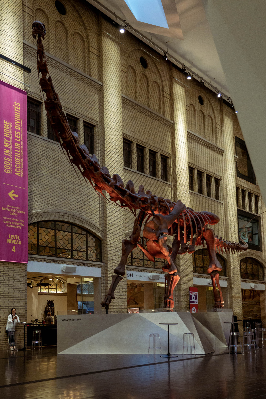 Toronto City Pass - Royal Ontario Museum