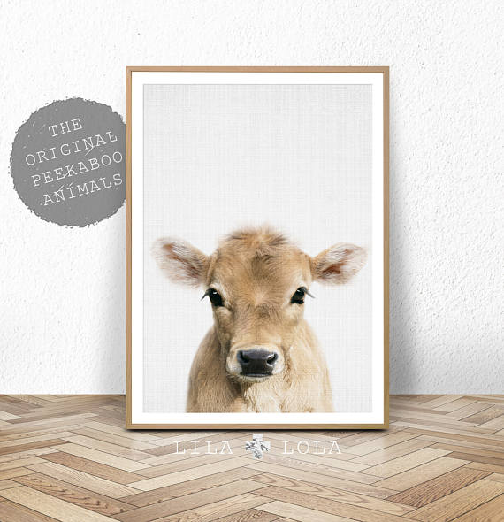 baby cow nursery art