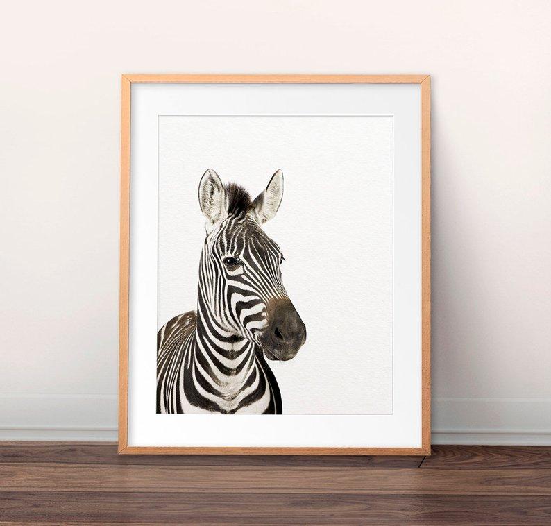 zebra nursery print